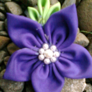pimpernel dark purple
