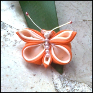 butterfly orange, bros cantik